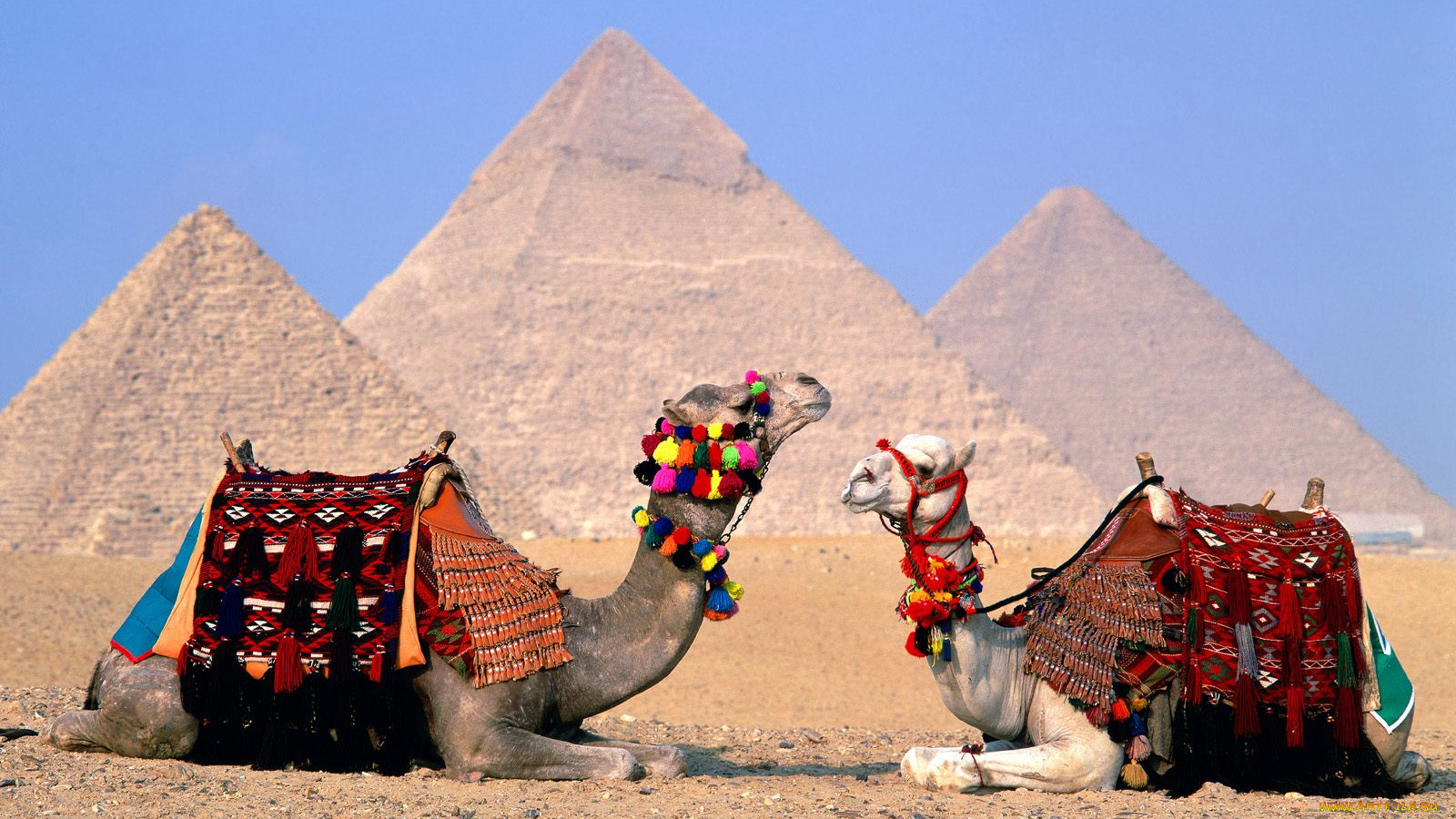 the background information of the country of egypt